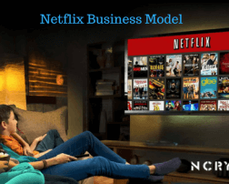 Netflix Business Model - Everything You need to know about How Netflix Works & Revenue Analysis