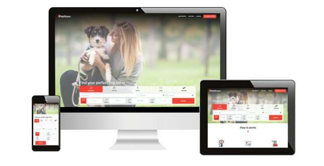 Launching PetSitCare - On Demand Pet Sitting Software that Will Take Your Startup to the Next Level