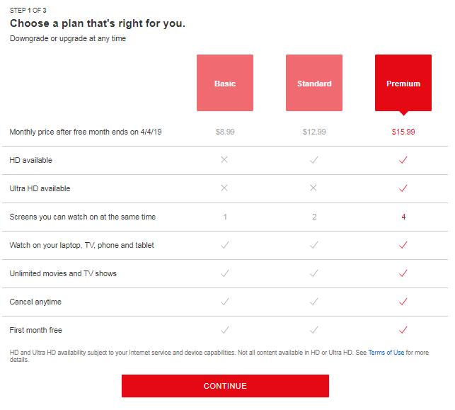 Subscription Based Company - Netflix