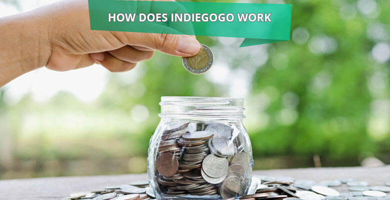 How does Indiegogo Work? Business and Revenue Model