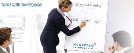 NCrypted is your one-stop-shop - we manage 'everything' for your website!