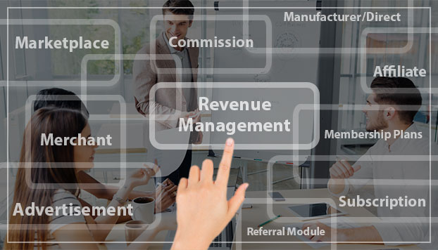 Nlance Revenue Model